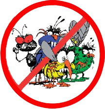 X Out Critters by Pesky Critters Pest Control, Wilmington MA and Raymond NH